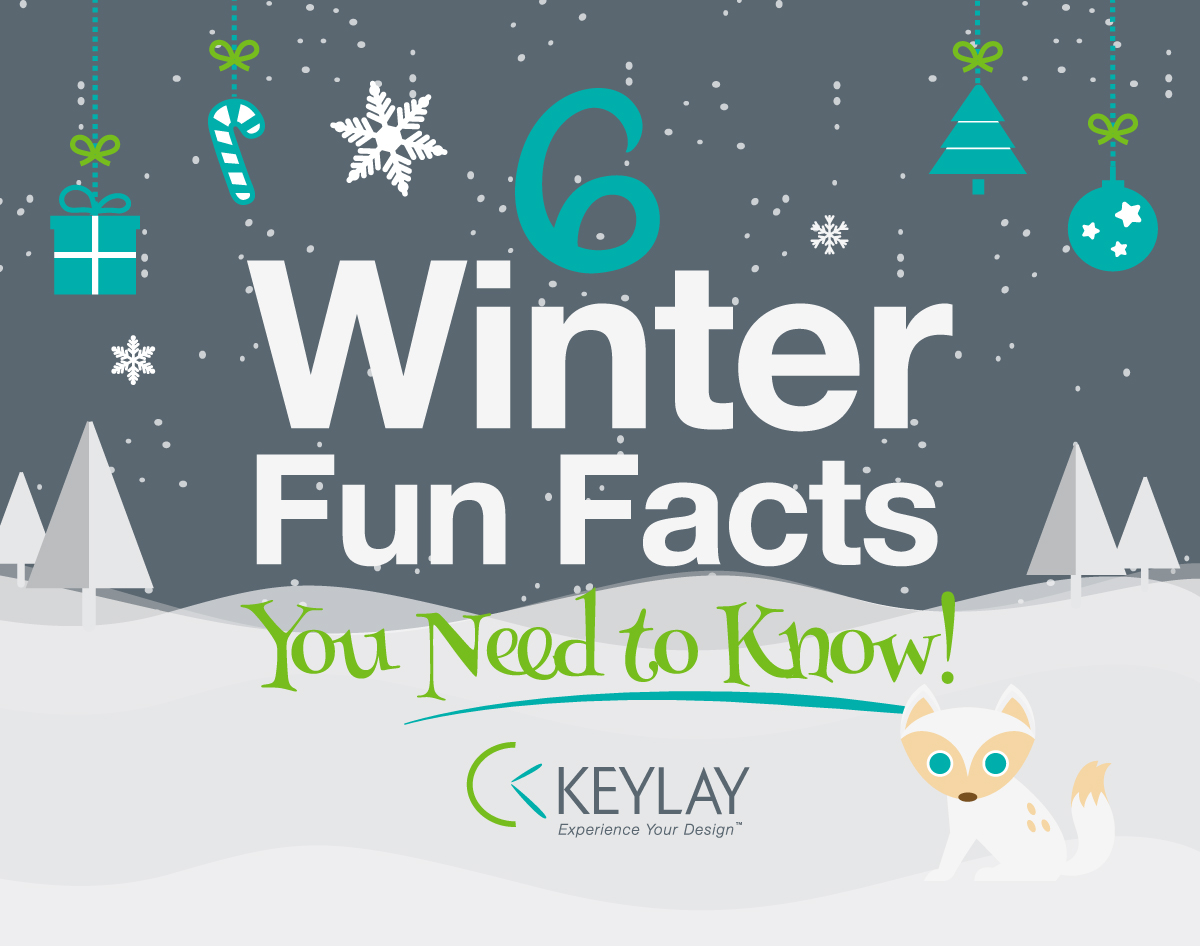 What Makes The Holidays Unique [Infographic]
